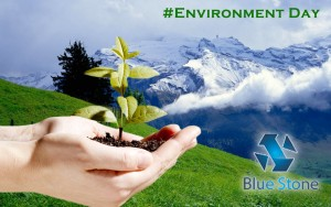 Save Environment with Bluestone